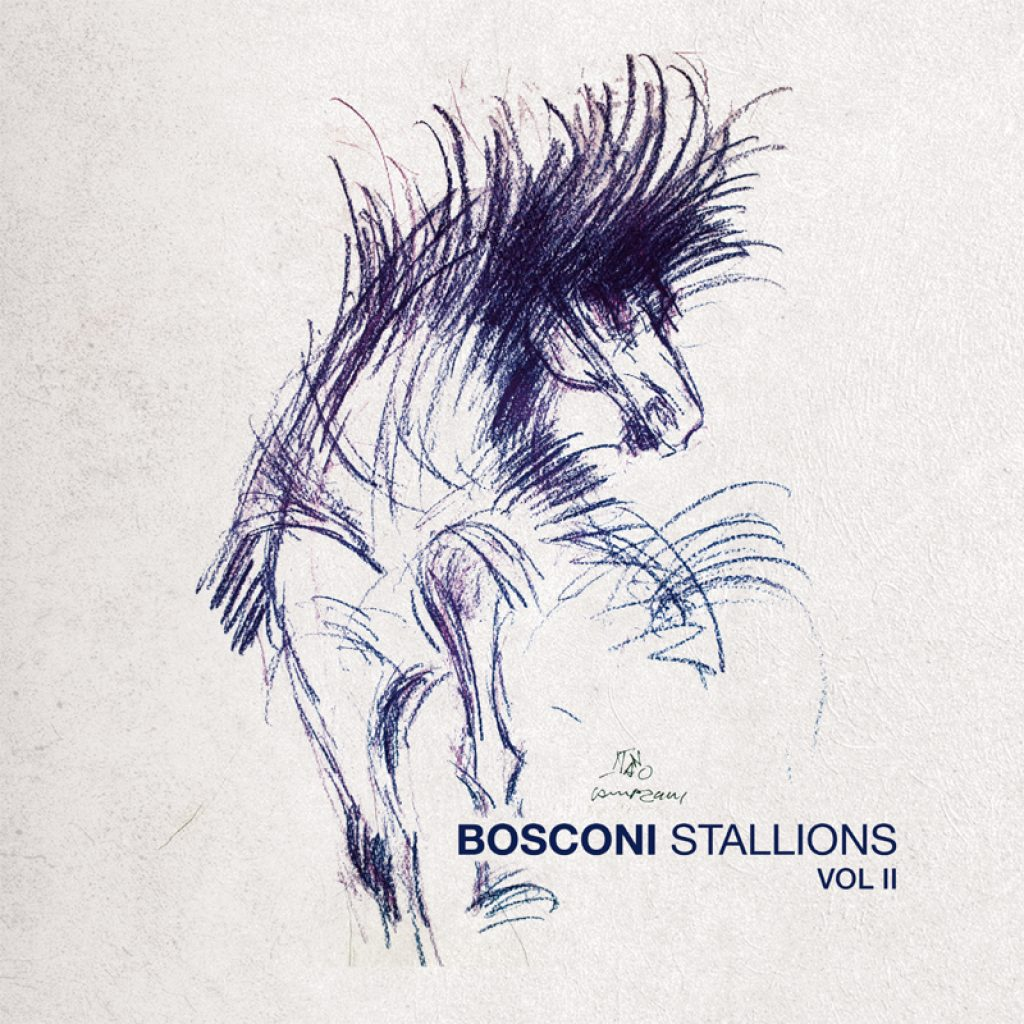 Bosconi Stallions Vol.2 - 10 Years Of Bosconi Records