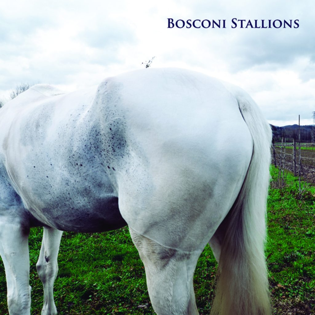 bosconi Stallions vol 1 a guy called gerald herva dukwa riccio marcello napoletano nightdrivers fabio della torre alex picone eduardo de la calle